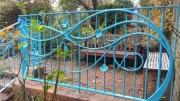 clematis-railing-09